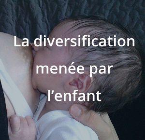 La diversification menée par l'enfant, formation à l'allaitement maternel